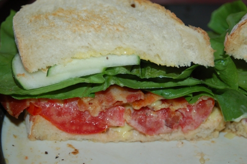 This lowly sandwich takes on a whole new meaning whne made iwth locaaaly grown in-season food.