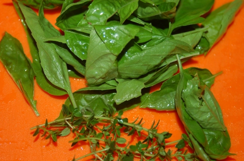 Thyme & Basil freshly snipped from my garden