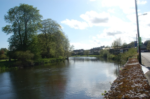 River Nore across the road from Bernie's house