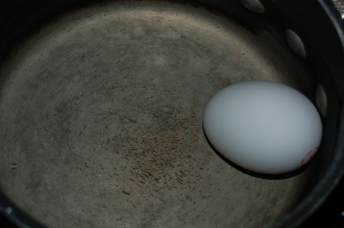 put egg in cold water