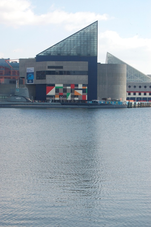The Baltimore aquarium - a worthwhile stop (just ask my freind bird who spent the morning there on sunday!)