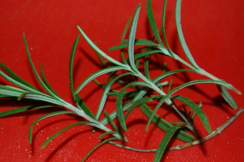 The rosemary in my garden is still going strong - I had better remeber to dig it up and take it indoors for the winter. There is a hole in my life if I have to resort to dried herb container!