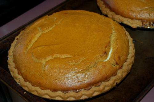 Just out of oven - Pumpkin Pie - cracked but will still taste as delicious!
